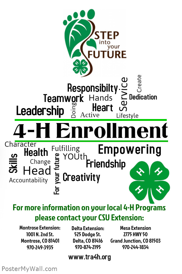 Enrollment Flyer